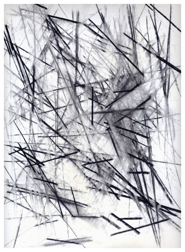 Untitled 1989 - charcoal / crayon